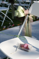 1681 Rosalie-and-Bryan Wedding Day 091209